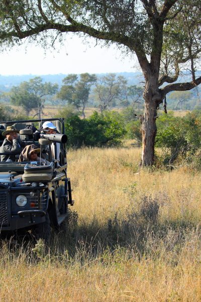 Traveling to a South African Safari: Getting There and Getting Around