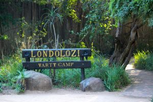 Londolozi Varty Camp