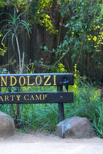 South African Safari at Londolozi Private Game Reserve in Sabi Sands
