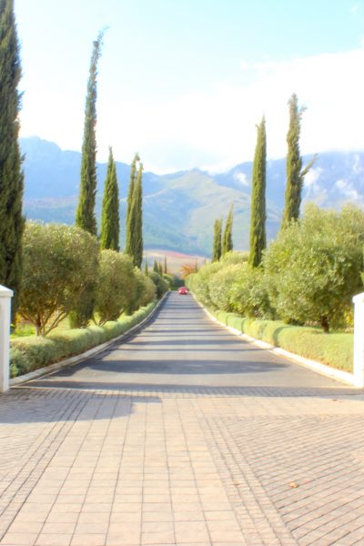 Franschhoek and The South African Winelands