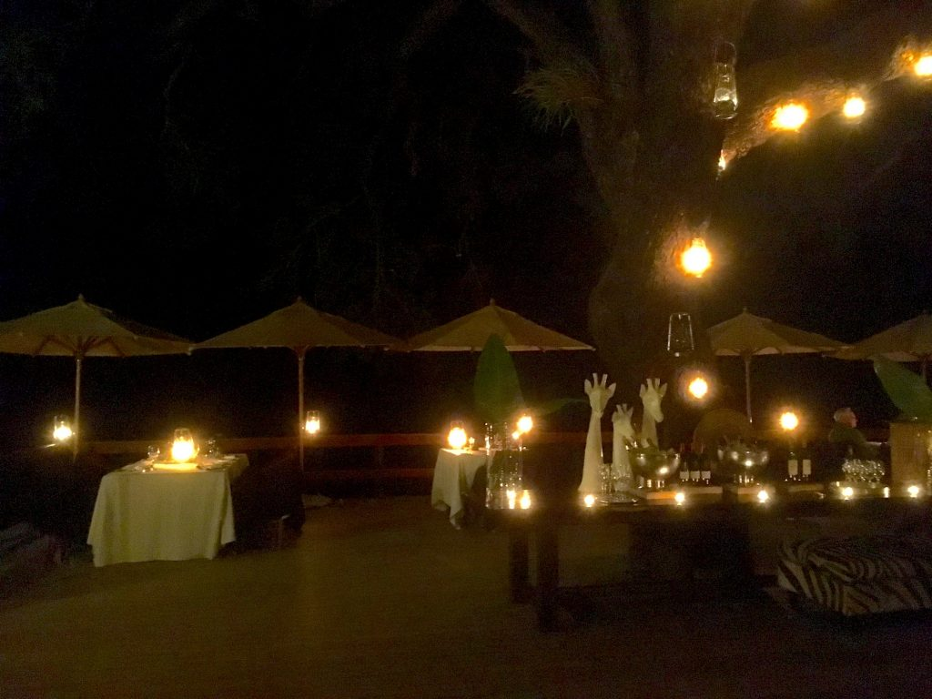 Dinner at Londolozi Varty Camp
