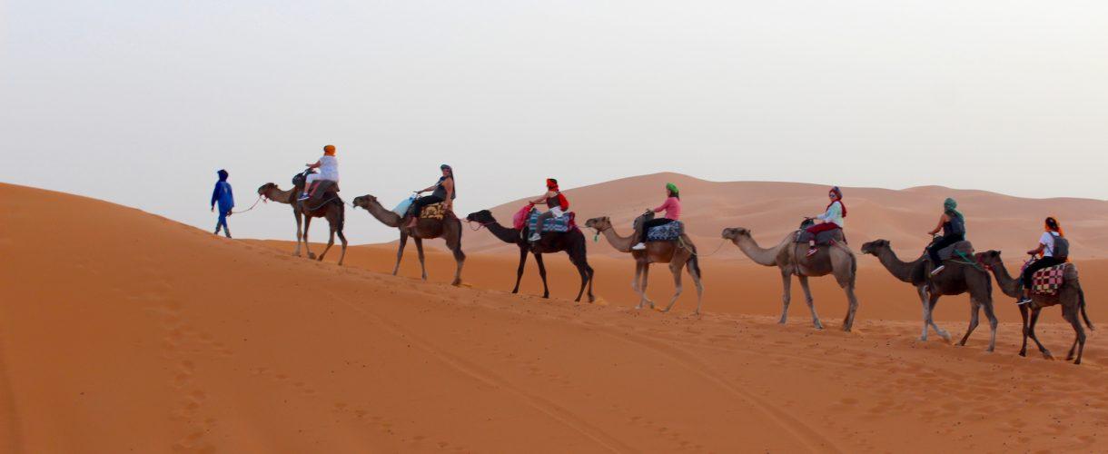 Camping in the Sahara Desert